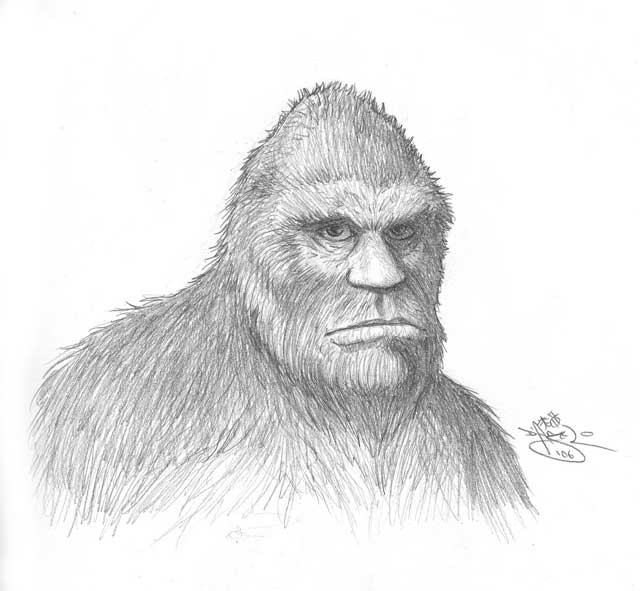 Image result for bigfoot drawings