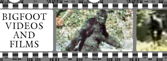 bigfoot video film footage